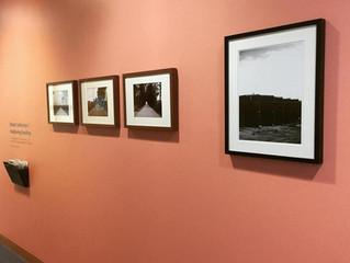 Exposición en la Universidad de Harvard