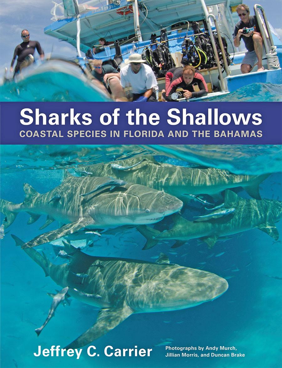 https://www.amazon.com/Sharks-Shallows-Coastal-Species-Florida/dp/1421422948