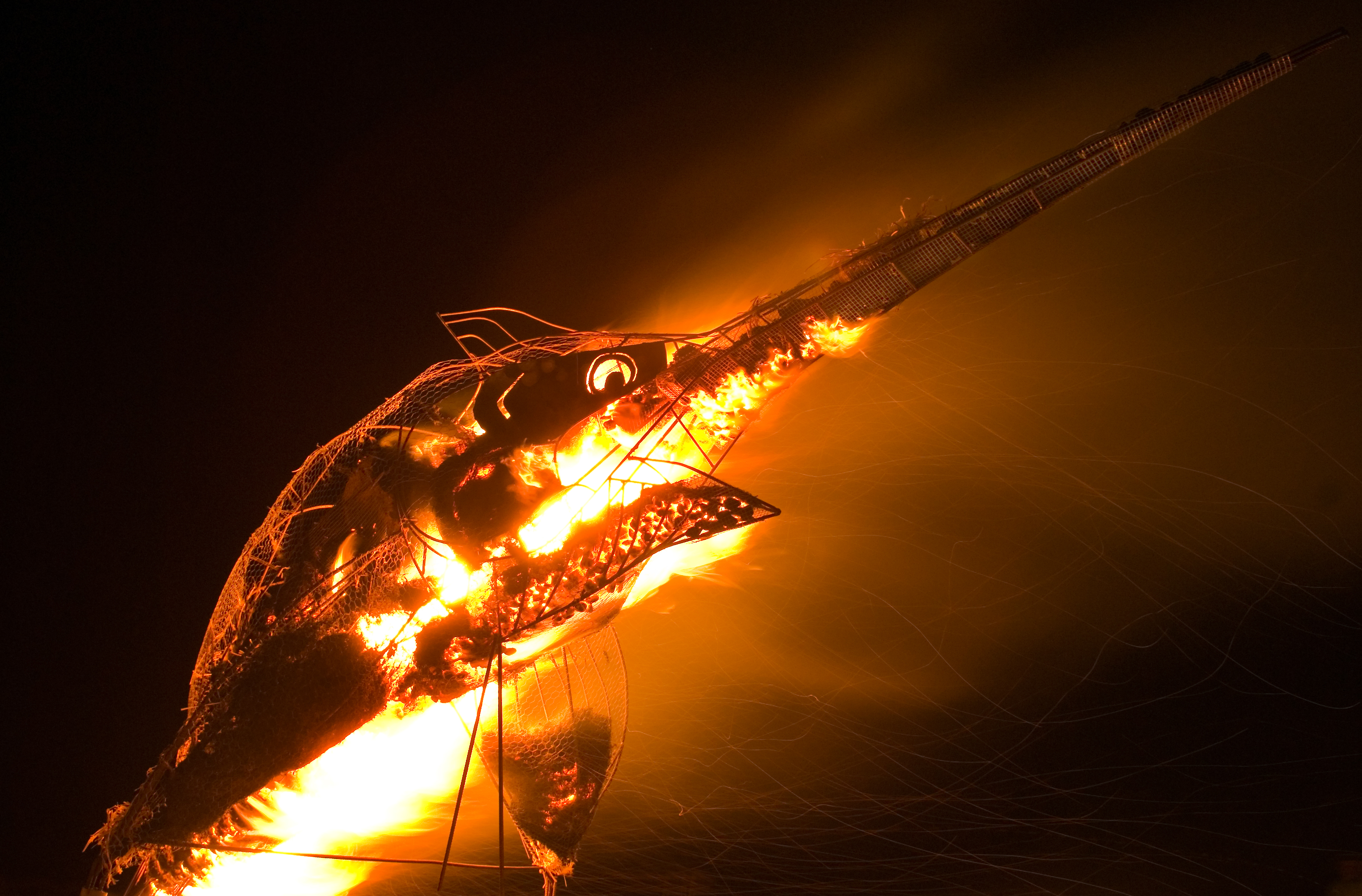 DUNCANBRAKEburningmarlin