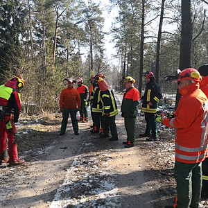 Kettensägenfortbildung der Feuerwehren der Stadt Munster