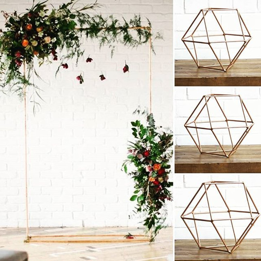 MARCH SPECIAL!!! Hire our geometric dome