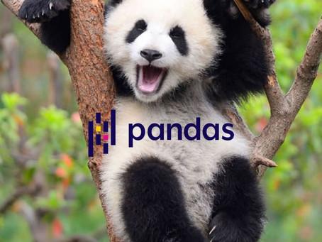 Pandas: aqui não é um urso, mas é tão poderoso quanto