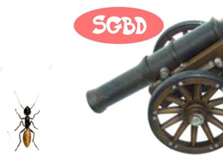 Não mate a formiga com um canhão