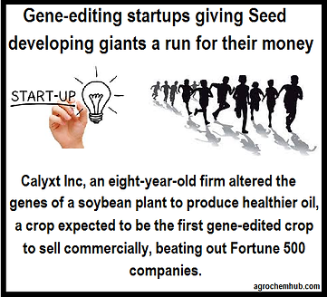 startup gene editing.png