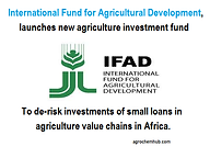 ifad.png