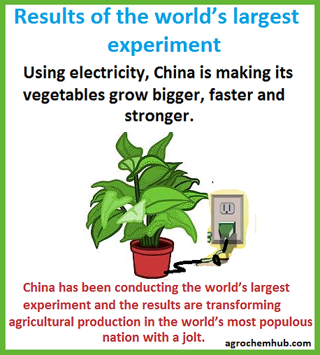 Chinaelectricityveg.png