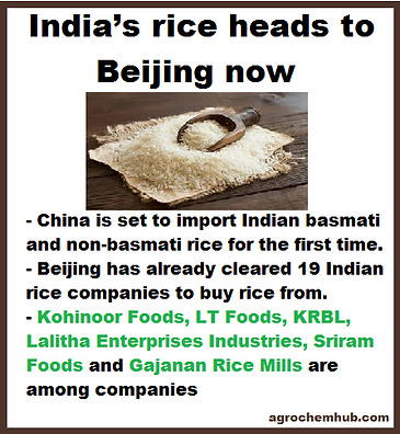 rice to china.png