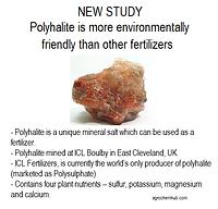 polyhalite.png