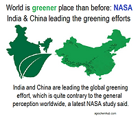 green india.png