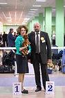 """Интернациональная Выставка собак """"Белый Город"""""""