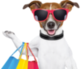 Dog Shopping at Pet Connections Expo 2020