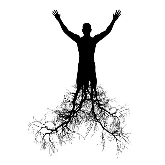 Chakra #1 - The Root Chakra