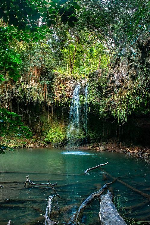 Twin Falls Maui