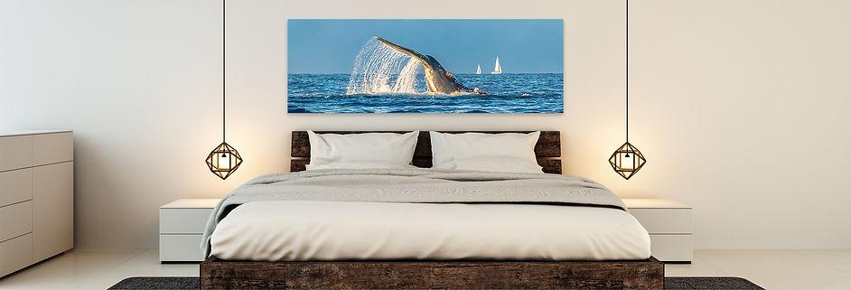 humpback-whale-tail-room-display-fine-art.jpg