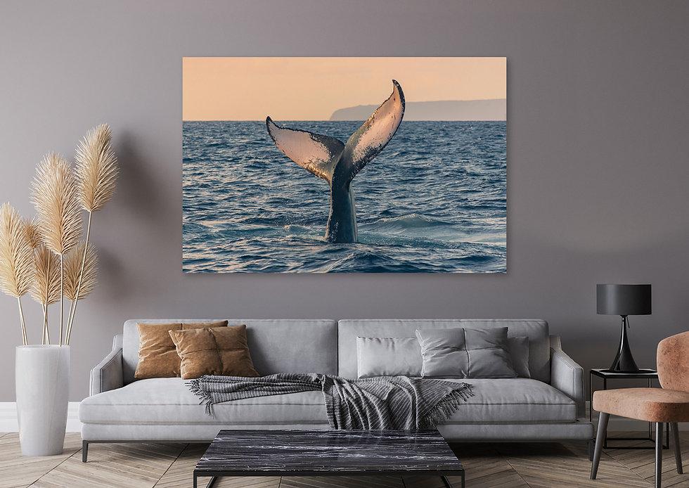 humpback-whale-tail-sunrise-spark-Maui-Fine-art-photography-hawaii-web-opt.jpg