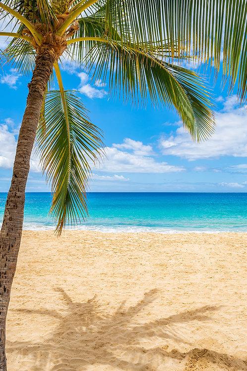 Hulopoʻe Beach Lanai