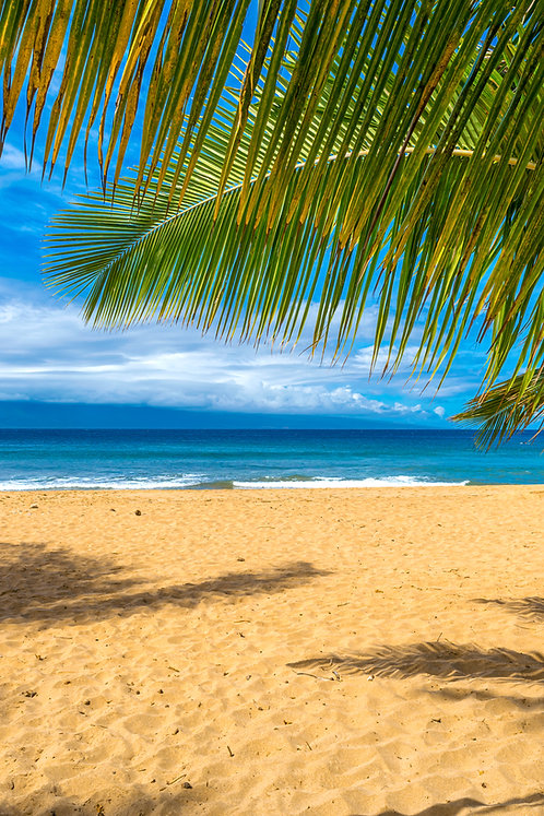 Beach Days in Maui