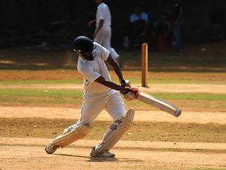 Cricket Strike