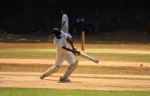 Sagist Cricket bat Strike