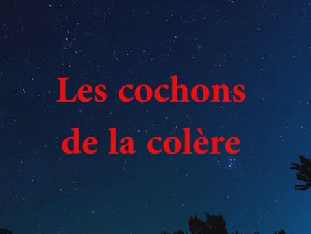ARIEGE (09) LES COCHONS de la COLERE