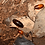 Thumbnail: Baratas do Kenya 25u