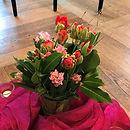 Aufstellungen Zürich mit Blumen fürs Herz