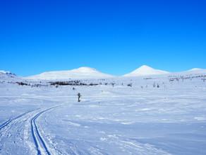 Mini-alenetur på ski