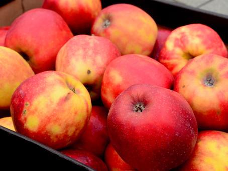 Niedaleko pada jabłko od… szarlotki!