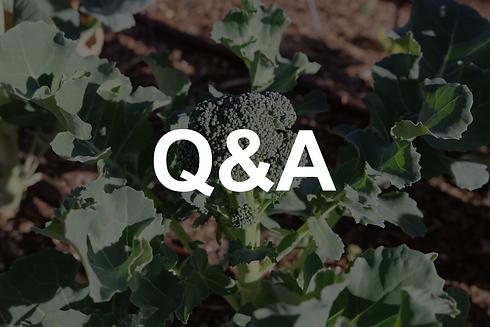 winter gardening Q&A.png