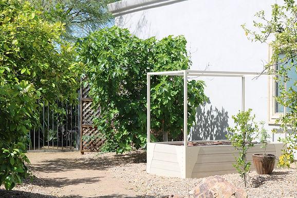 Thrive Luxury Garden Beds