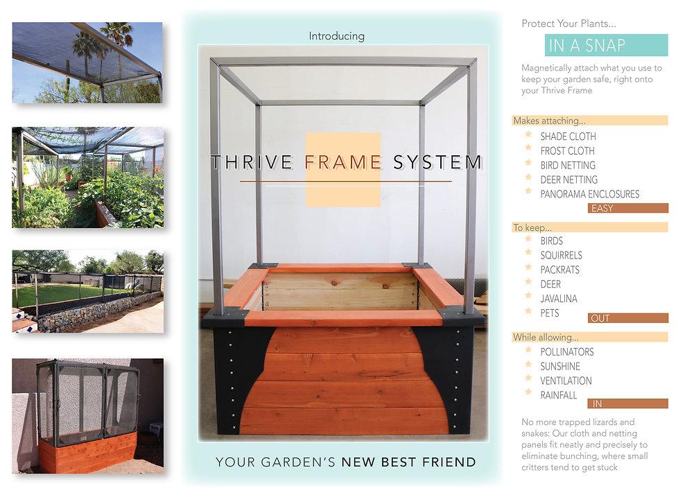 Thrive Frame System Ad1.jpg