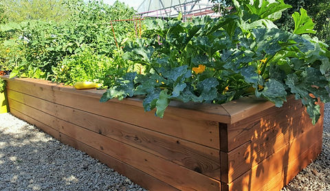 classic garden beds, thrive frame system, raised garden beds, thrive and grow gardens, vegetable gardening