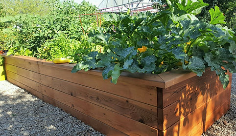 thrive and grow gardens, vegetable gardening, raised garden beds, raised bed gardening