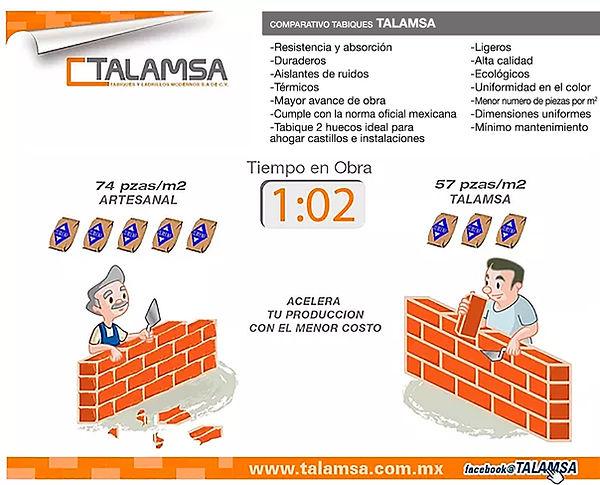 Tabique Macizo Talamsa