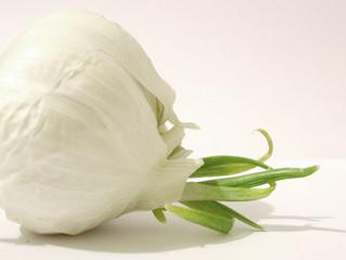 Consociazioni - A, B dalle rose all'aglio al basilico sul davanzale