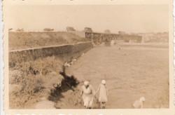 Прочноокопский мост вид с р.Кубани