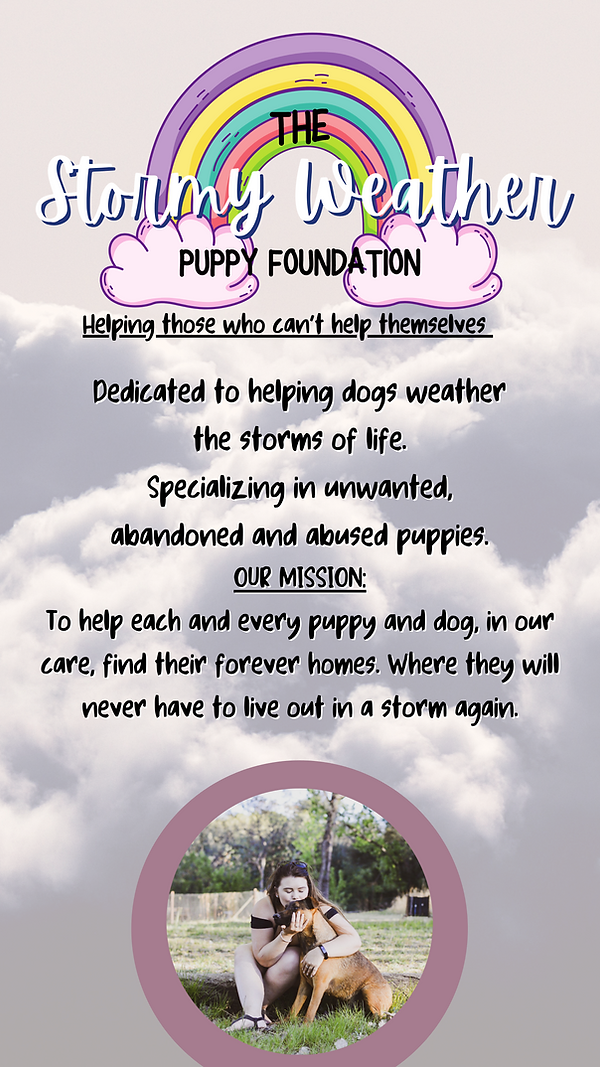 The Stormy Weather Puppy Foundation.png