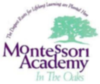 montessori academy in the oaks.jpeg