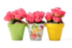 5D4B6606-Fabric-Covered-Flower-Pot.jpg