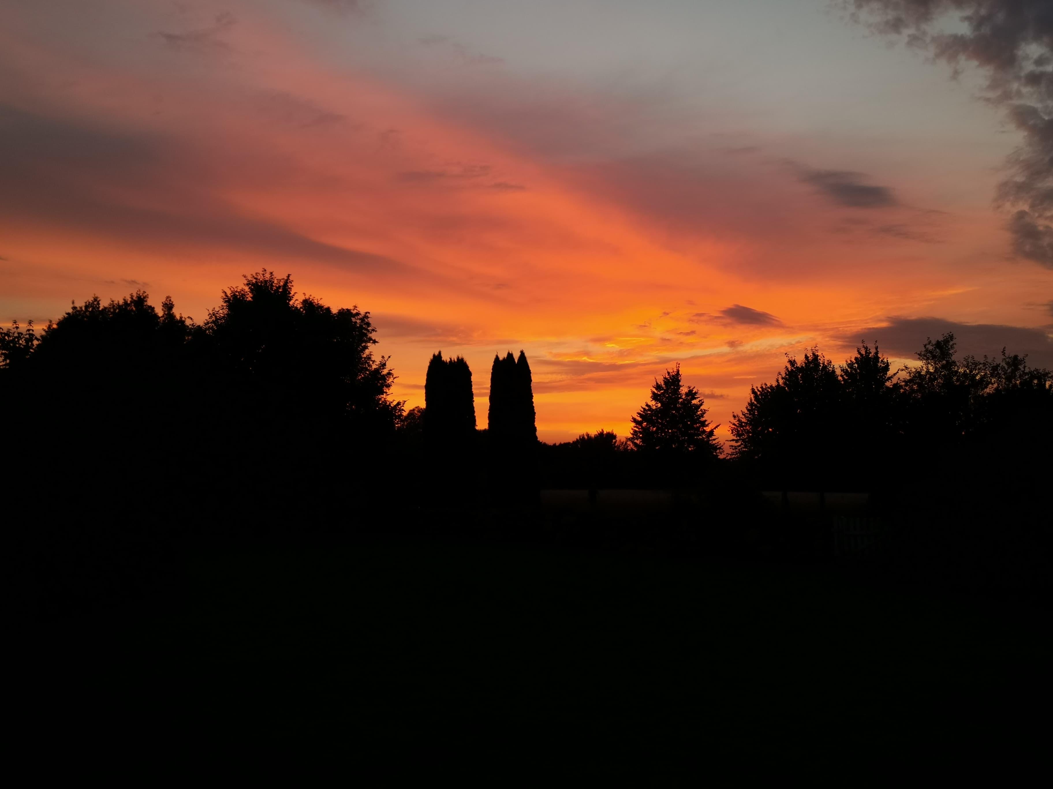 Flot solnedgang fra haven på Edelsminde gods