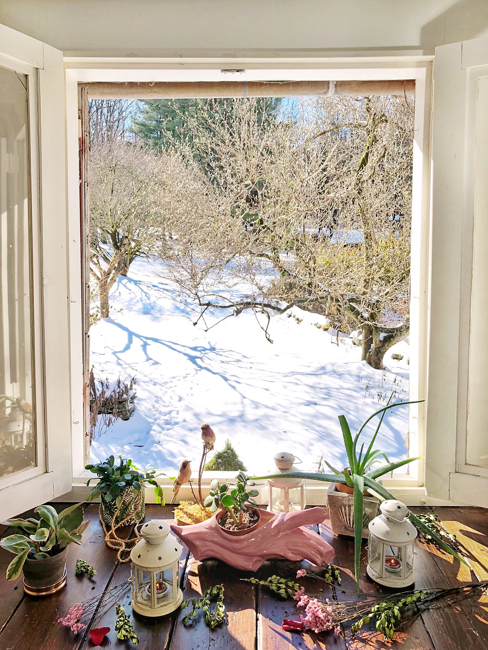 Hayloft window open with wood floors and plants. Snow on the ground outdoors