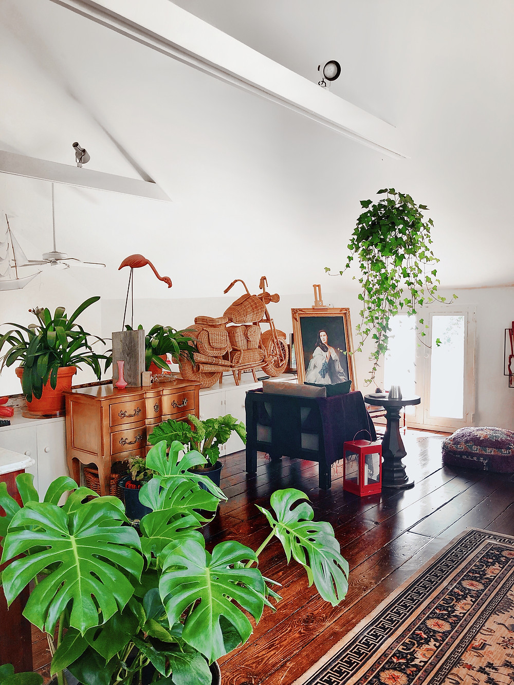 monstera and ivy filled loft with bright window