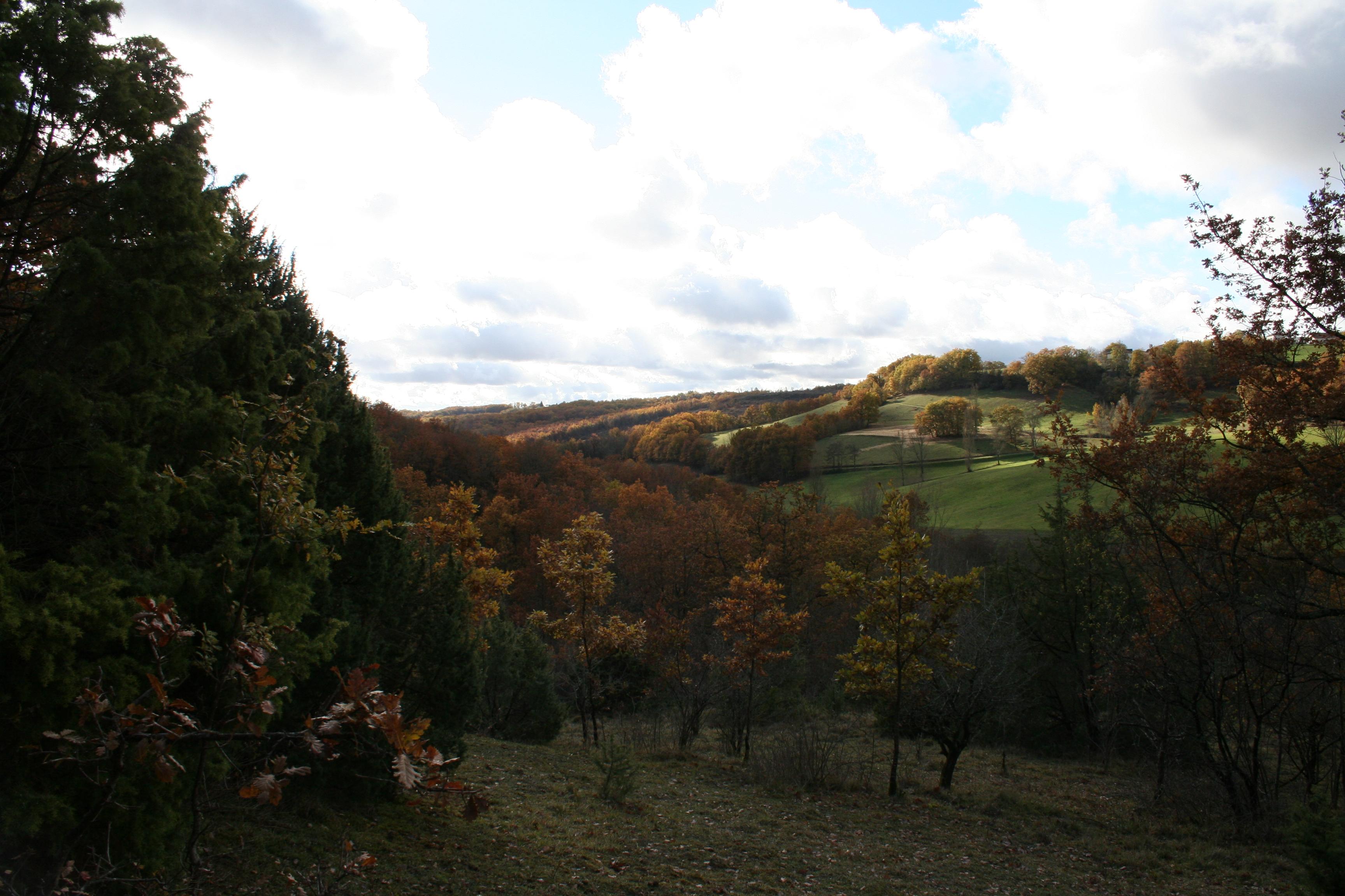 Valley behind our farm/Vallée