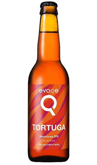 Evoqe - Tortuga Cl.33