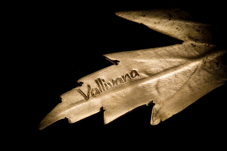 Diseño Vallivana de la Figuera