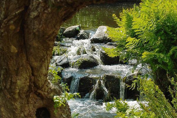 water-654109_1280.jpg