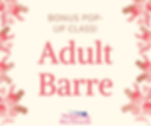 Adult Barre.png