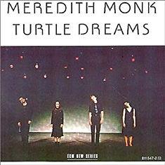 Turtle Dreams.jpg