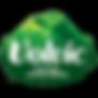 Volvic Logo.png