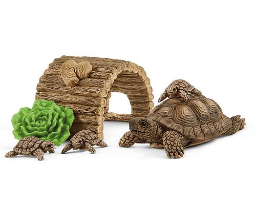 Schleich Wildlife Tortoise Home Playset